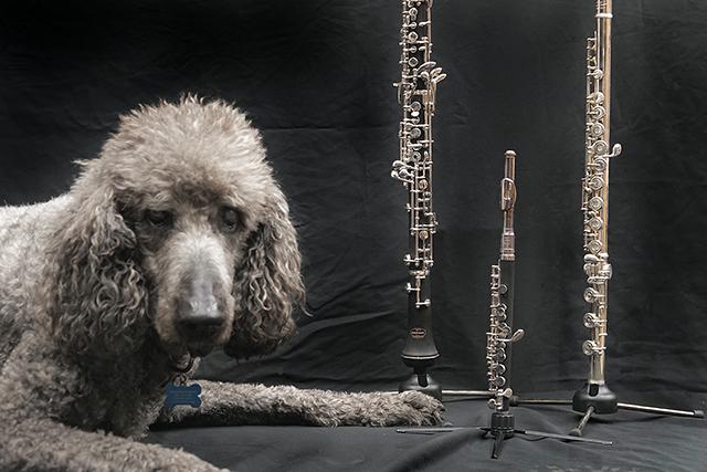 Tempest Brass Instruments